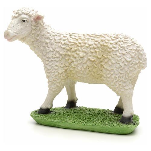 Nativity figurine, sheep in resin 24cm 1