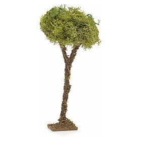 Arbre en miniature avec lichen pour crèche h 16 cm s1