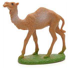 Camello pesebre 11cm de alto s1