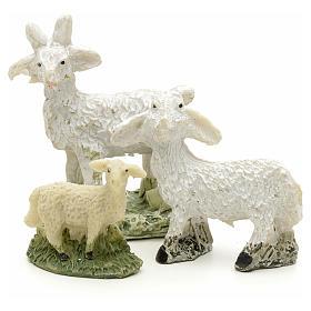 Pecore e capre h 4 cm s1