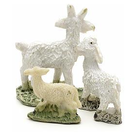 Pecore e capre h 4 cm s2