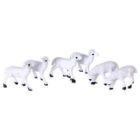 Nativity figurines, sheep 8 cm s1