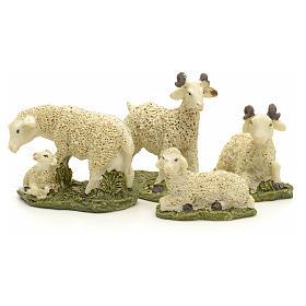 Pecore in resina presepe 10 cm set 4 pz s2