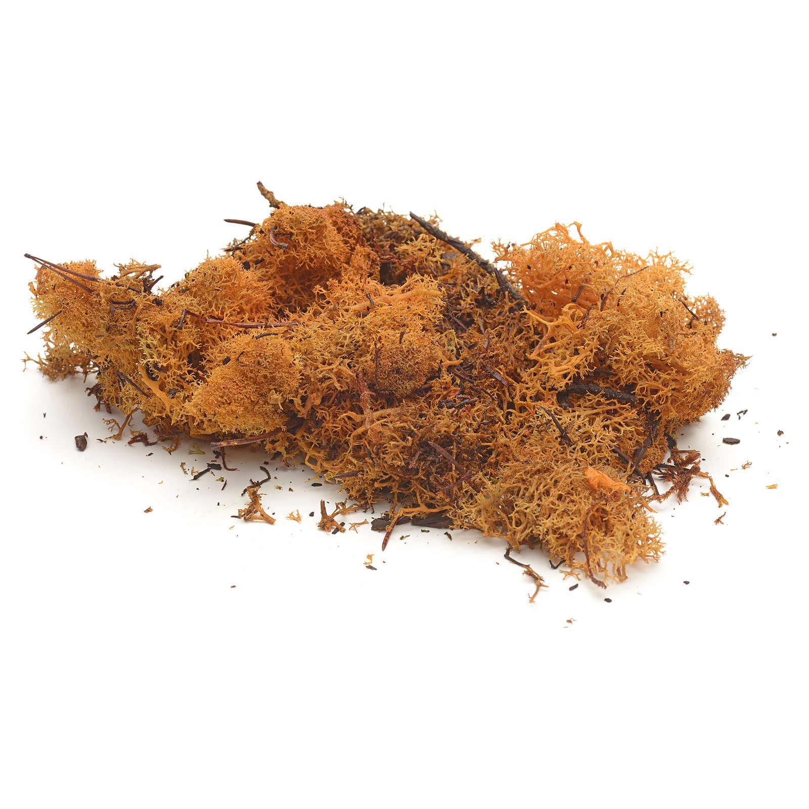 Lichene arancio 50 gr presepe 4