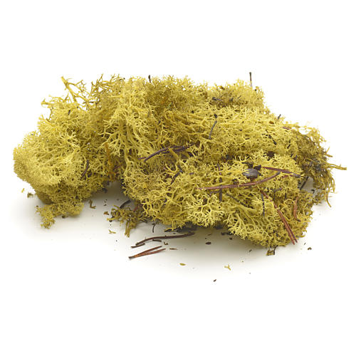 Nativity Scene accessory: yellow lichen 50 gr 1