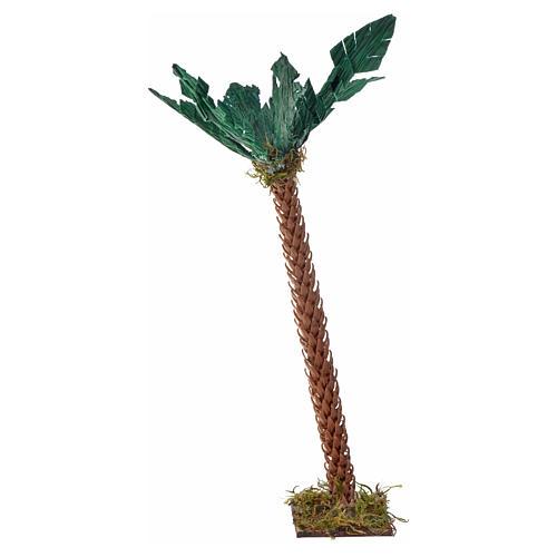 Palma h 17 cm presepe napoletano 2