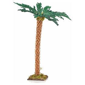 Palmier crèche Napolitaine 22 cm s1