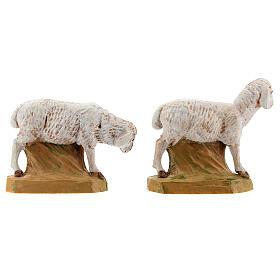 Pecore 17 cm Fontanini 2pz s4