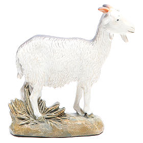 Goat 16cm Martino Landi Collection s2