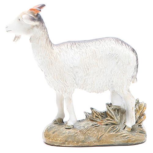 Chèvre 16 cm gamme Martino Landi 1