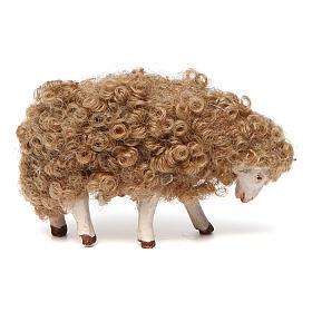 Sheep with head down 14 cm nativity set s1