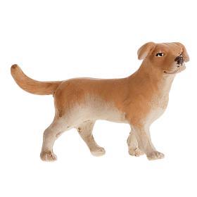 Belén napolitano: Perro 14 cm. belén napolitano