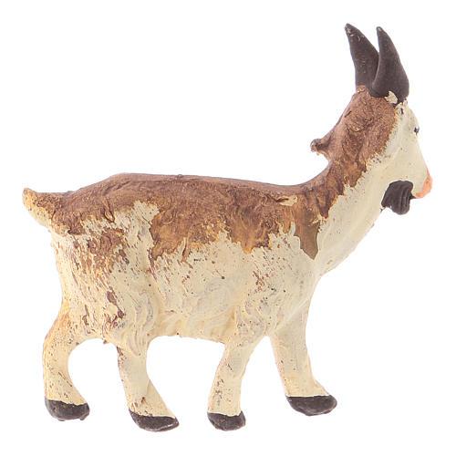 Neapolitan Nativity figurine, Little goat 8cm 2