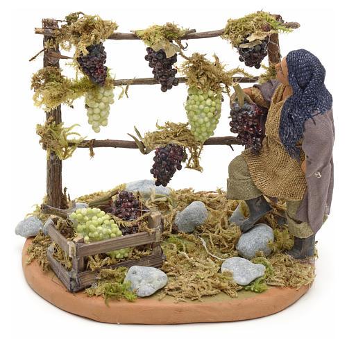 Neapolitan Nativity figurine, man harvesting grapes, 10 cm 5