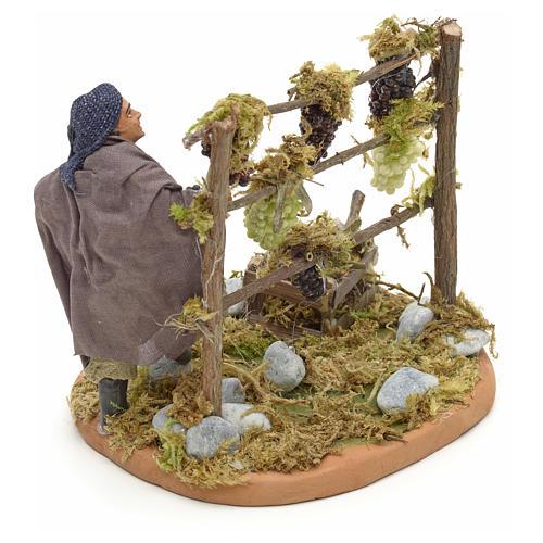 Neapolitan Nativity figurine, man harvesting grapes, 10 cm 7