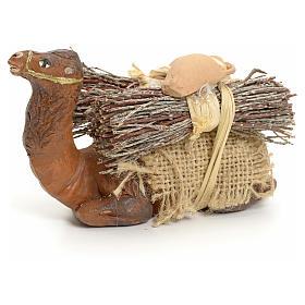 Camello en rodillas con leña cm 8 pesebre napolitano s1