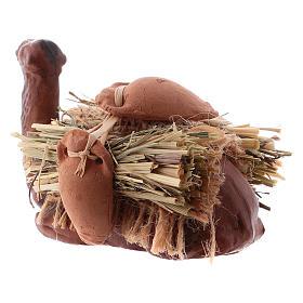 Camello en rodillas con leña cm 8 pesebre napolitano s6