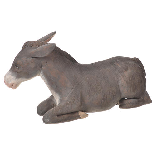 Donkey in terracotta, Neapolitan Nativity 24cm 2