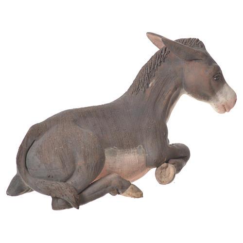 Donkey in terracotta, Neapolitan Nativity 24cm 3