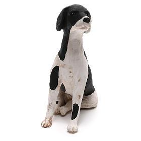 Perro sentado 24 cm terracota belén Nápoles s2