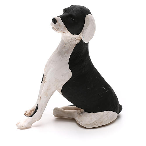 Perro sentado 24 cm terracota belén Nápoles 1