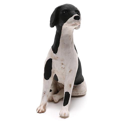 Perro sentado 24 cm terracota belén Nápoles 2