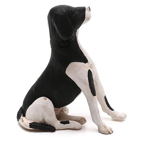 Perro sentado 24 cm terracota belén Nápoles 3