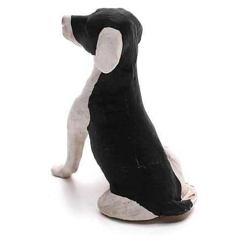 Perro sentado 24 cm terracota belén Nápoles 4