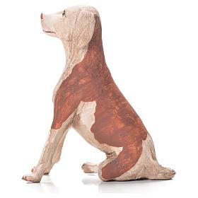 Cane seduto 24 cm terracotta presepe Napoli s3
