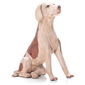 Terracotta dog sitting, 24cm Neapolitan Nativity s1