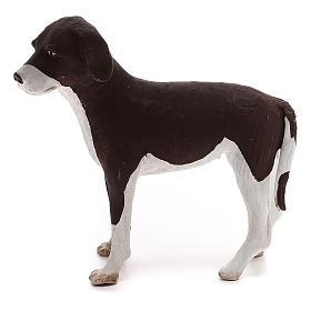 Perro de pie 24 cm de altura media terracota belén Nápoles s1
