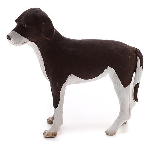 Perro de pie 24 cm de altura media terracota belén Nápoles 1