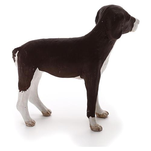 Perro de pie 24 cm de altura media terracota belén Nápoles 2