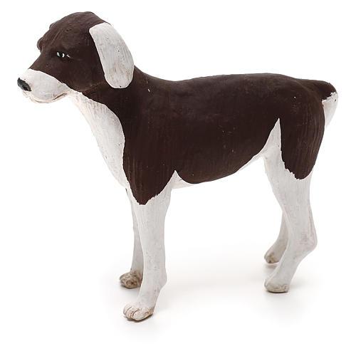 Perro de pie 24 cm de altura media terracota belén Nápoles 3