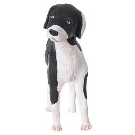 Cane in piedi 24 cm terracotta presepe Napoli s3