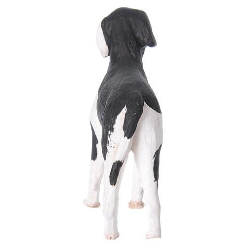 Cane in piedi 24 cm terracotta presepe Napoli 6