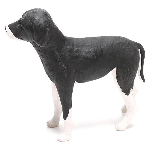 Cane in piedi 24 cm terracotta presepe Napoli 5