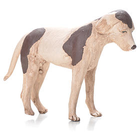 Terracotta dog standing, 24cm Neapolitan Nativity s1