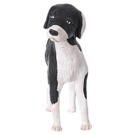 Terracotta dog standing, 24cm Neapolitan Nativity s3