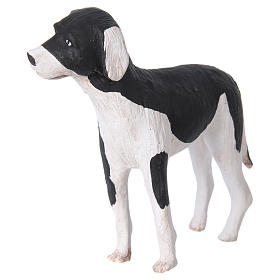 Terracotta dog standing, 24cm Neapolitan Nativity s4