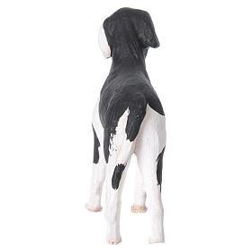Terracotta dog standing, 24cm Neapolitan Nativity s6