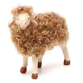 Pecora in piedi con lana 24 cm presepe Napoli s4