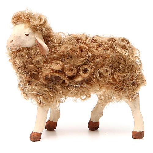 Pecora in piedi con lana 24 cm presepe Napoli 1
