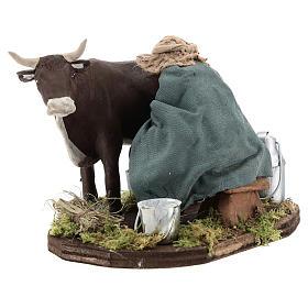 Uomo che munge mucca 12 cm presepe Napoli s3
