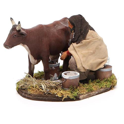 Uomo che munge mucca 12 cm presepe Napoli 2