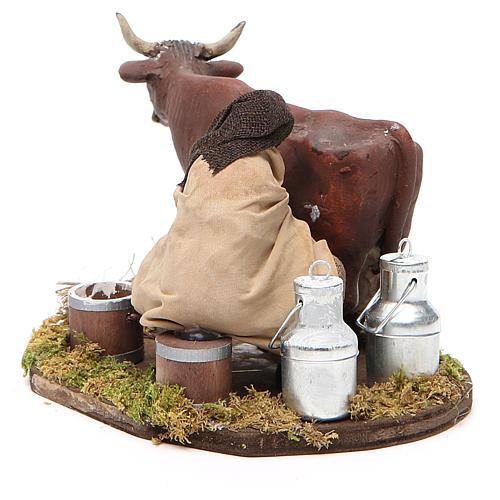 Uomo che munge mucca 12 cm presepe Napoli 3