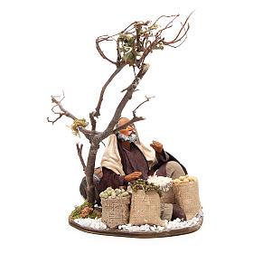 Marchand avec sacs de graines et arbre 24 cm crèche Naples s4