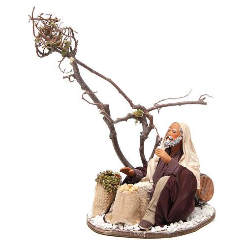 Marchand avec sacs de graines et arbre 24 cm crèche Naples 2