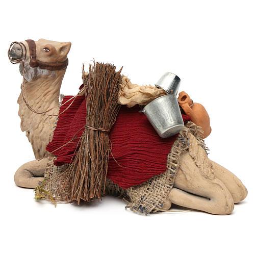 Harnessed sitting camel for Neapolitan nativity 14cm 2