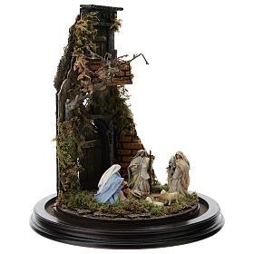 Escena pesebre Sagrada Familia campana vidrio base madera 25 cm Belén Napolitano s4